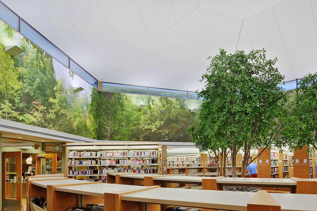 Ramsey Library Construction Company